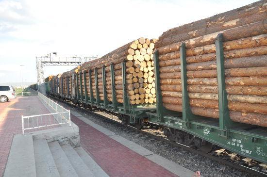 俄罗斯进口木材