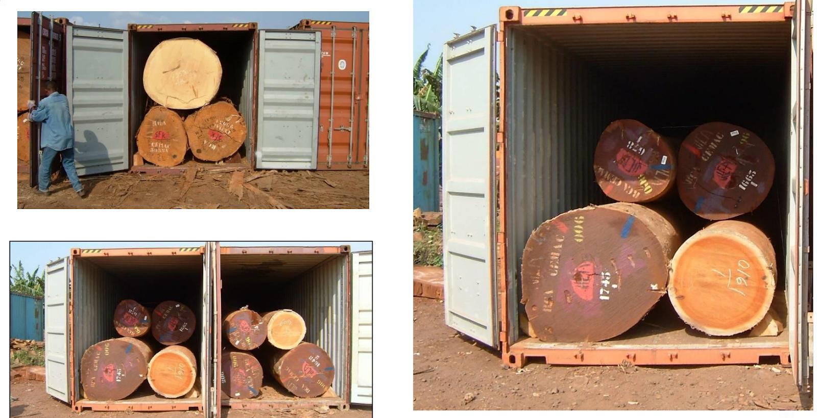 集装箱装木材